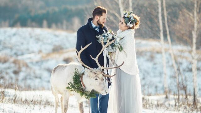 Beautiful-bride-and-groom-walk-with-the-deer-cm